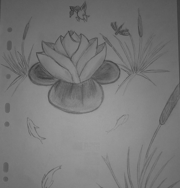 Supafan union gallery style 77 - Comment dessiner un lotus ...